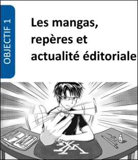 Formation mangas Lecture jeunesse