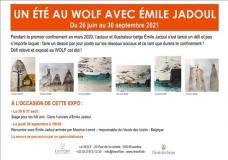 Un été au Wolf avec Émile Jadoul