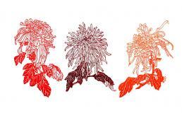 ″Fleurs de fenêtresʺ : l'art du papier découpé chinois
