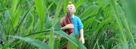 """Petite conférence """"Dans les coulisses des aventures de Tintin"""""""